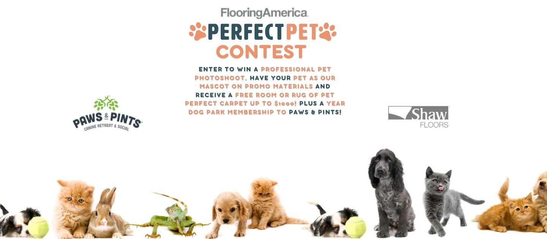 Carpet And Flooring At Flooring America In Grand Rapids, MI